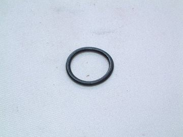 Picture of BI1001131 O RING  (EACH)